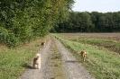 Tierschutzwanderung 2014_12