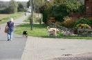 Tierschutzwanderung 2014_3